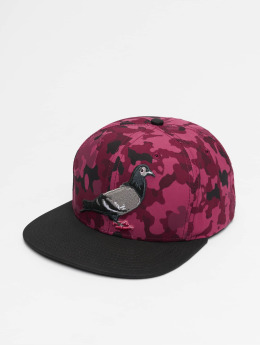 Staple Pigeon Casquette Snapback & Strapback Pigeon rouge