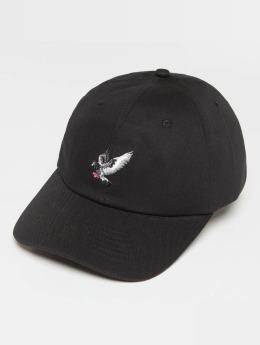 Staple Pigeon Snapback Cap Pigeon Flying black