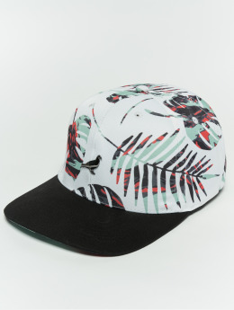 Staple Pigeon Snapback Caps Jungle bialy