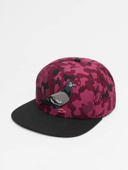 Staple Pigeon Snapback Caps Pigeon czerwony