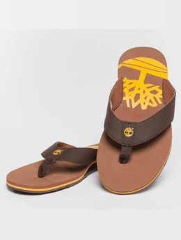 Timberland Slipper/Sandaal Wild Dunes Synth Thong bruin