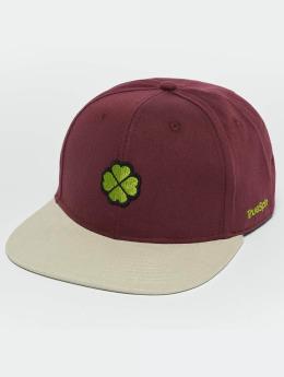 TrueSpin Snapback Caps Shamy 2018 rød