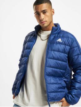 adidas Originals Зимняя куртка ESS Down синий