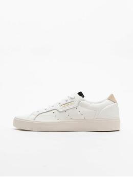 adidas originals Сникеры Sleek белый