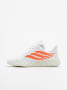 adidas Originals Сникеры Sobakov  белый