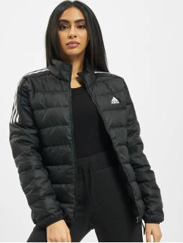adidas Originals Стеганая куртка Ess Down черный