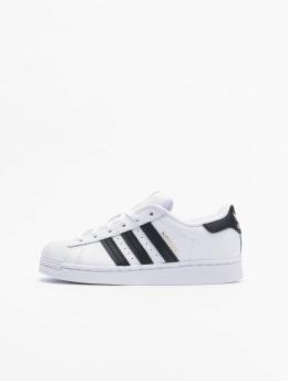adidas Originals Baskets Superstar C blanc