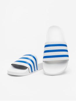 adidas Originals Claquettes & Sandales Adilette  blanc