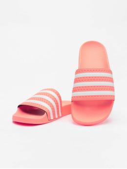 adidas Originals Claquettes & Sandales Adilette magenta