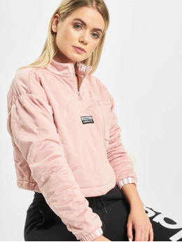 adidas Originals Jersey Cropped fucsia