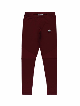 adidas originals Legging Clrdo rot