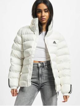 adidas Originals Manteau hiver W Itavic M H J  blanc