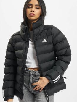 adidas Originals Manteau hiver W Itavic M H J noir