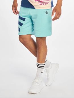 adidas Originals Pantalón cortos Sportive Nineties verde