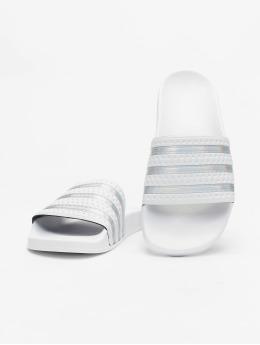 adidas Originals Sandal Adilette  hvid