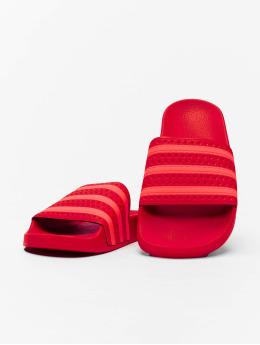 adidas Originals Sandaler Adilette  röd