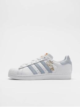 new concept 3a9e9 68260 adidas originals Sneaker Superstar weiß