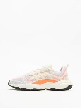 adidas Originals Haiwee Sneakers Ftwr WhiteOff WhiteSignal Coral