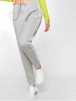adidas originals Spodnie do joggingu Regular Tp Cuff szary