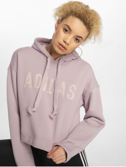 adidas originals Sweat capuche Cropped pourpre