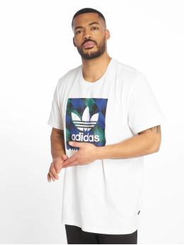 adidas originals T-Shirt Towning BB weiß