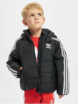 adidas Originals Übergangsjacke Padded schwarz