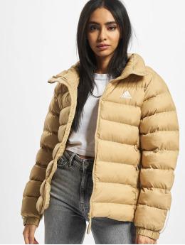 adidas Originals Winter Jacket W Itavic M H J  beige
