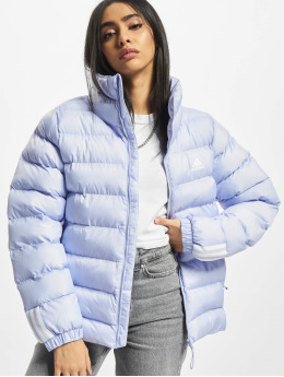 adidas Originals Winter Jacket W Itavic M H J purple