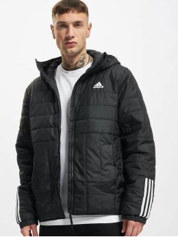 adidas Originals Zimní bundy Itavic L HO  čern