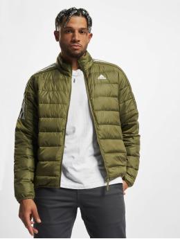 adidas Originals Zimní bundy ESS Down zelený