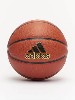 adidas Performance Basketballer New Pro  brun