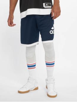 adidas Performance Basketballshorts SPT BOS blau