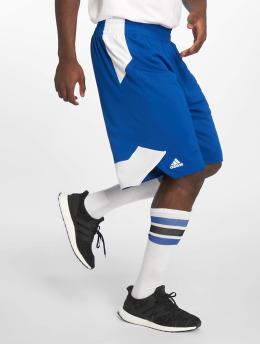 adidas Performance Basketballshorts Crzy Expl  niebieski