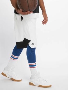 adidas Performance Basketballshorts Crazy Explosive weiß