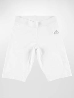 adidas Performance Kompressions Shorts Alphaskin hvid