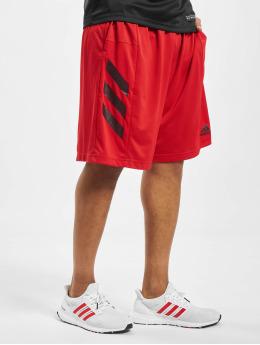 adidas Performance Pantalón corto desportes SPT 3 Stripes rojo