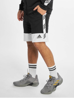 adidas Performance Pantaloncini da basket PM nero