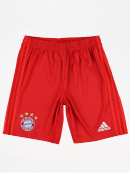 adidas Performance Shorts Football FC Bayern Home rouge