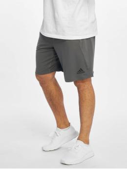 adidas Performance Shorts sportivi 4K  grigio