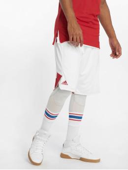 adidas Performance Shorts Crazy Explosive weiß