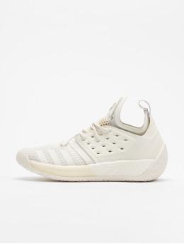 adidas Performance Sneaker Harden Vol. 2 grigio
