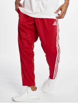 adidas Performance Spodnie do joggingu Marquee czerwony