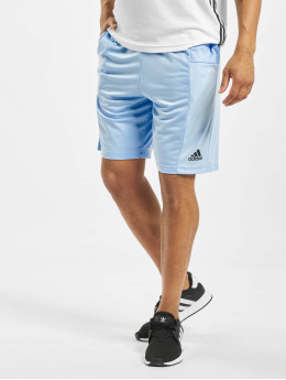 adidas Performance Sport Shorts SPT 3 Stripes blau