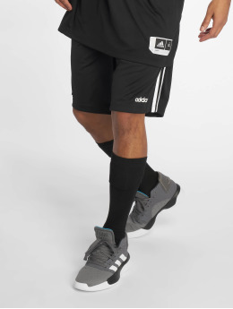 adidas Performance Sport Shorts 3S czarny