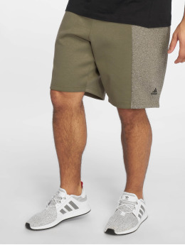 adidas Performance Sport Shorts Stadium khaki