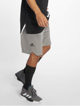 adidas Performance Sport Shorts ACT 3S szary