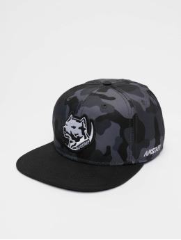 Amstaff Snapback Caps Tafio  camouflage
