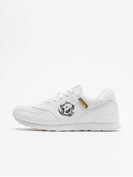 Amstaff Sneaker Running Dog weiß