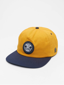 Cayler & Sons Casquette Snapback & Strapback Cl Holidays Strong Deconstructed jaune