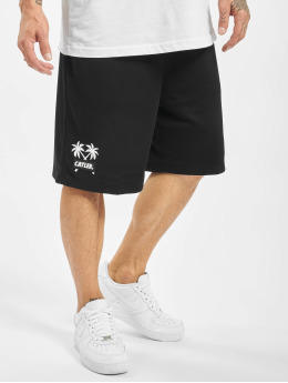 Cayler & Sons Shorts Statement Palms Mesh nero